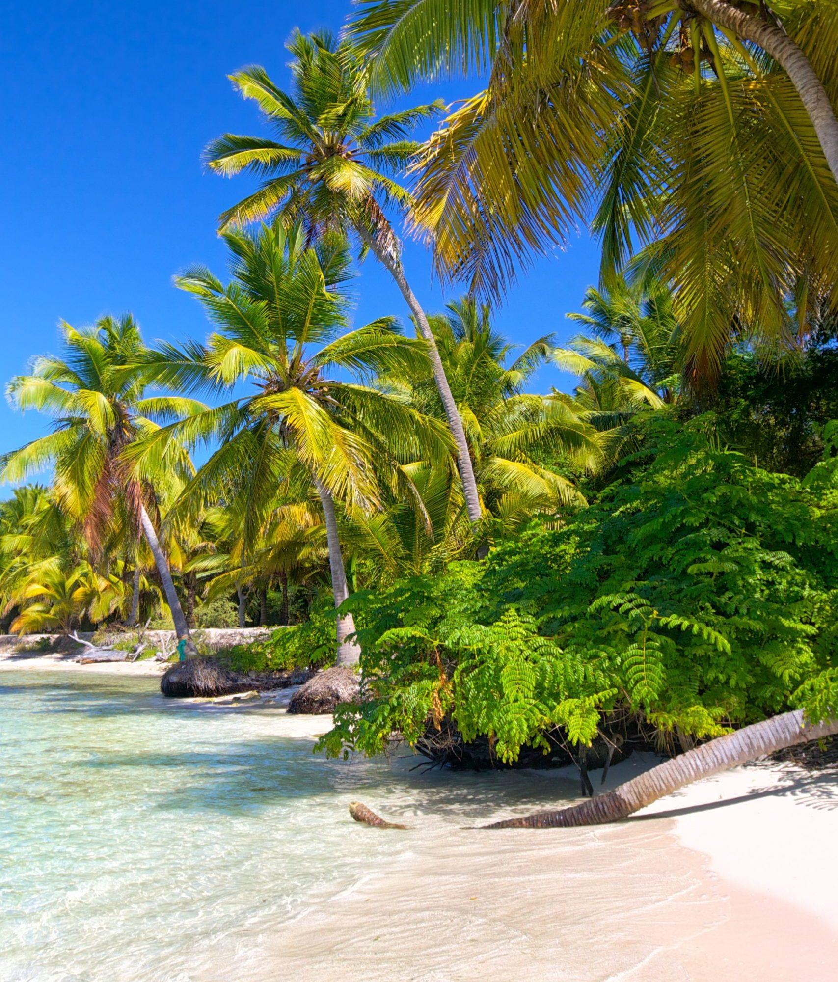 caribbean-beach-PCSW7UV (1)